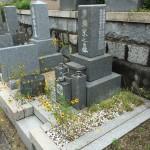 長峰霊園で雑草対策ジオミックスの施工依頼がありました