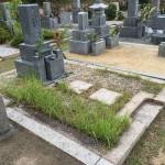 芦屋墓園で雑草対策の固まる土の施工しました