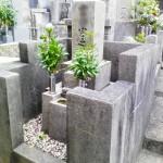 淡路島 洲本の由良にて墓じまいしました