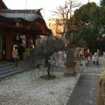 綱式神社さんの大祓(おおはらい)のお手伝いさせていただきました。