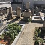 法泉寺春日野墓地、申し込みあり決まりました。